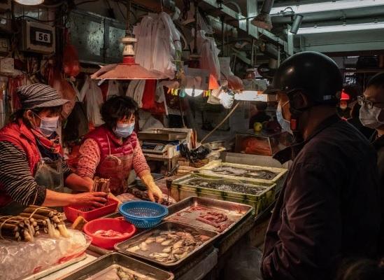 China e Vietnã proíbem comércio de animais silvestres após surto de COVID-19