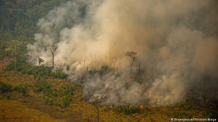 """Amazônia como """"ativo problemático"""" e o despotismo quase perfeito, por Luis Fernando Novoa Garzon"""