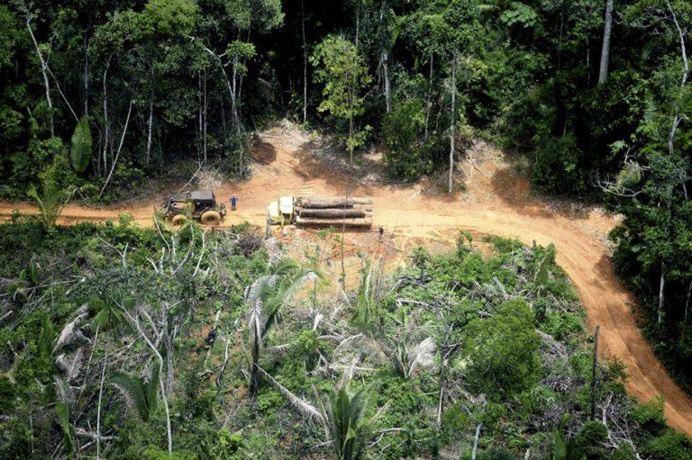 Bolsonaro pede prioridade da Câmara à mineração em terras indígenas