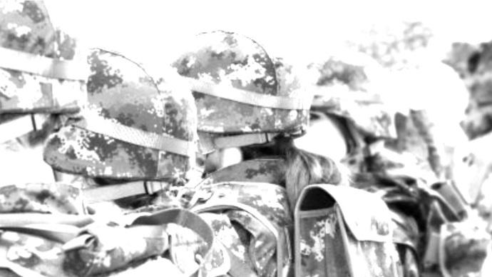 Para que serve o exército brasileiro?, por Rogério Maestri