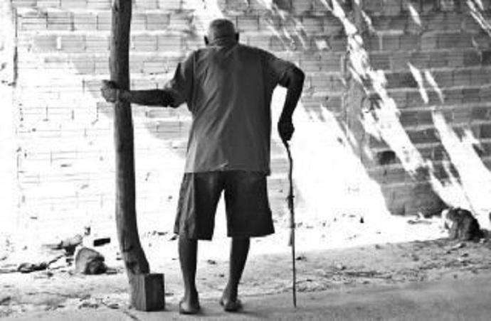 Ignorância e crueldade, por Jorge Alexandre Neves