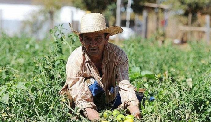 Gustavo Noronha: 'É necessário rediscutirmos a agroecologia como um caminho pós-Covid-19'